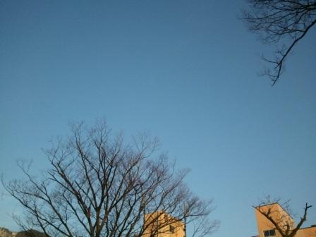 2011-03-14 06.36.43.jpg