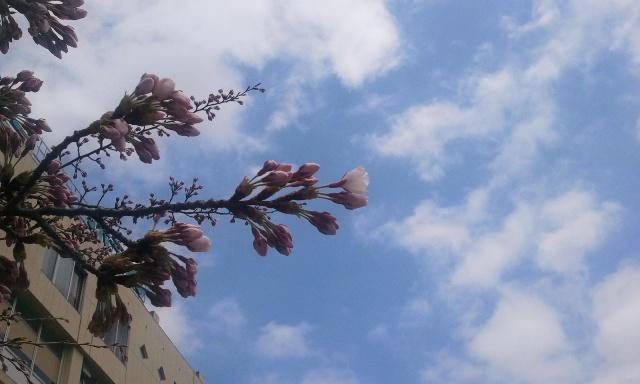2012-04-18 12.12.10.jpg