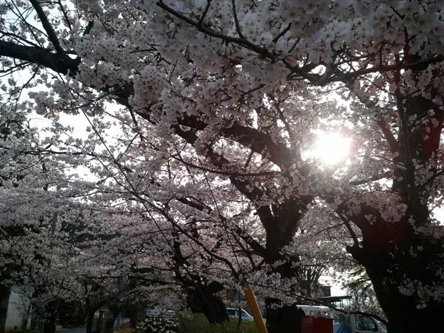2011-04-21 06.40.02.jpg